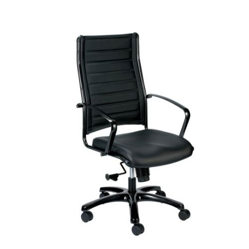 <br><b>New Eurotech Europa Leather Chair</b><br>LE811, $295